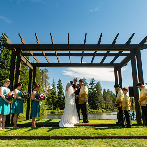wedding party under trellis